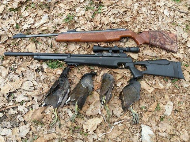 17 شکارچی غیرمجاز و متخلف در شادگان دستگیر شدند