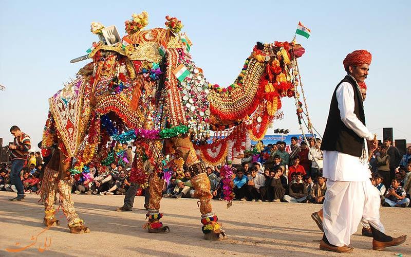 مسابقات زیبایی شترها در جشنواره شتر بیکانر راجستان هند